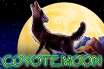 Луна Койота в казино на деньги